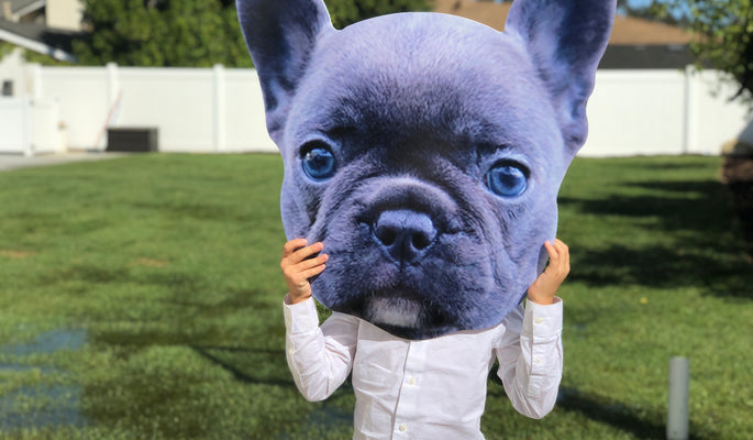 Take Your Pet Anywhere With Custom Pet Heads