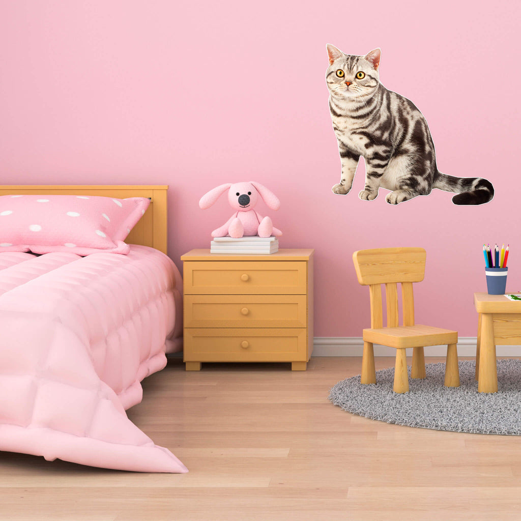 American Shorthair Body Vinyl Wall Sticker - pawprintshq-com