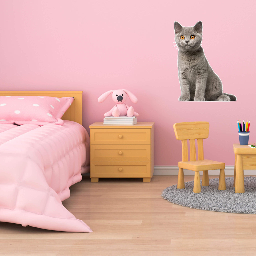 British Shorthair Body Vinyl Wall Sticker - pawprintshq-com