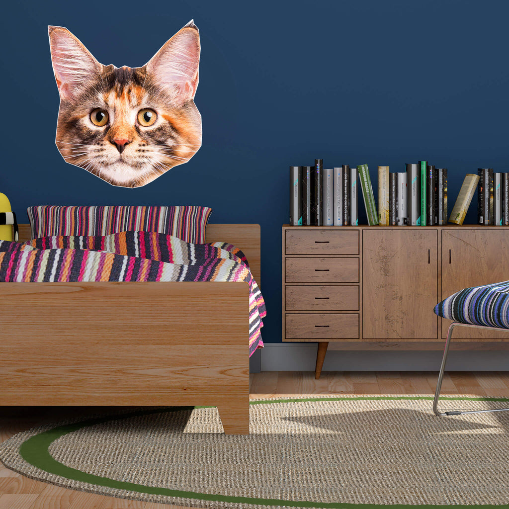 Main Coon Head Vinyl Wall Sticker - pawprintshq-com