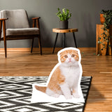 Scottish Fold Body Standup - pawprintshq-com