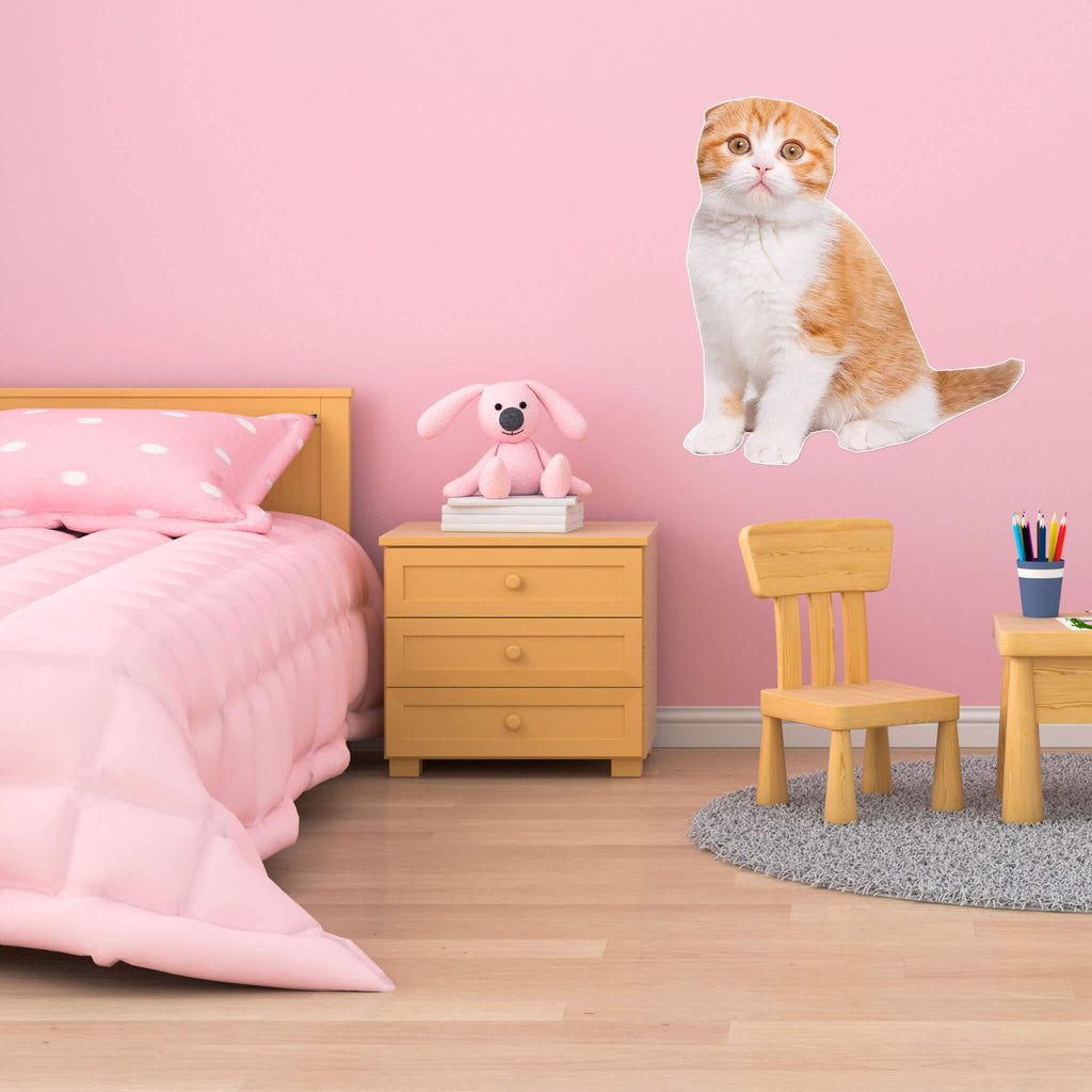 Scottish Fold Body Vinyl Wall Sticker - pawprintshq-com