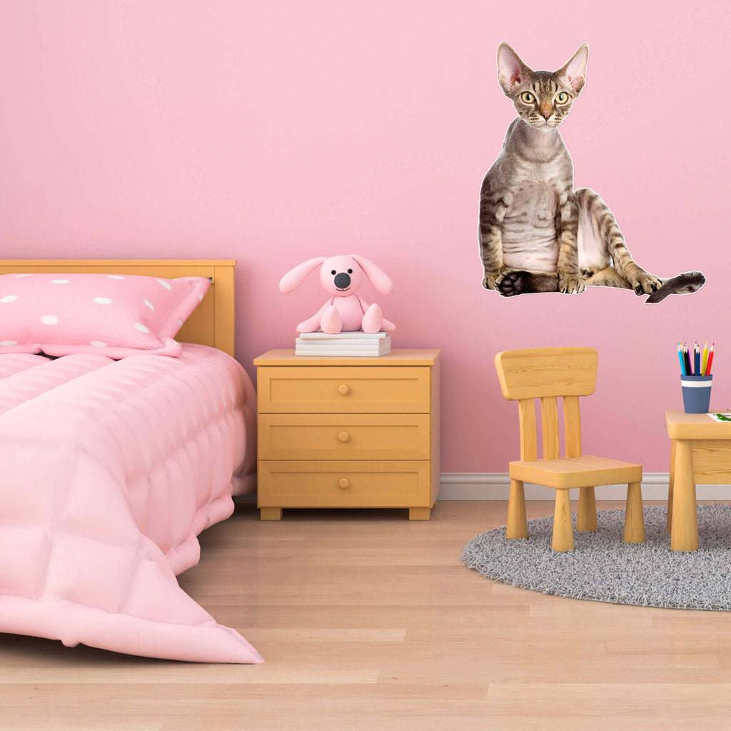 Devon Rex Body Vinyl Wall Sticker - pawprintshq-com