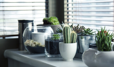 Quick & Easy Ideas to Inject Some New Life into your Living Space Interiors