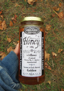 Organic Wildflower Bee Honey 500G (12 Jars)