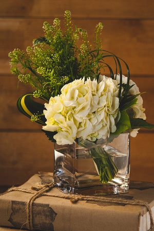 Blue Ivy Flowers - White hydrangea in glass vase sitting on books