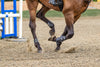 Osteoarthritis in the Equine Athlete
