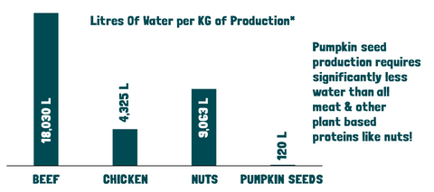 pumpkin seeds water consumption compared to beef