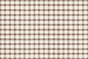 Brown Painted Check Placemats