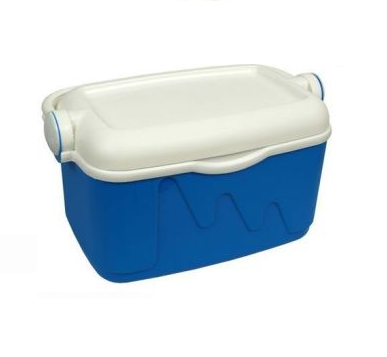 Curver Tourist Ice Box, 20 Liters - White and Blue