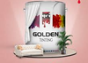 GOLDEN TINTING Emulsion  GP-050 3.6L BASE B