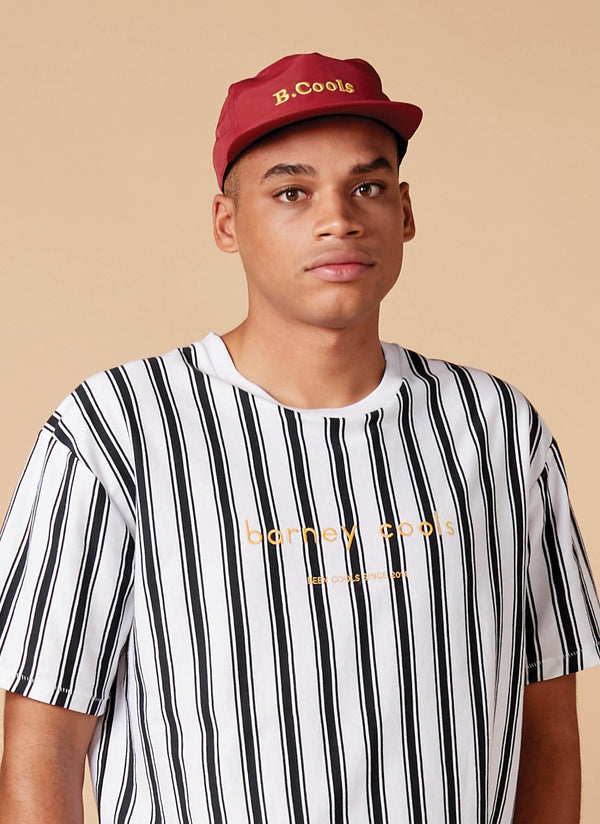 Homie Tee White Vertical Stripe