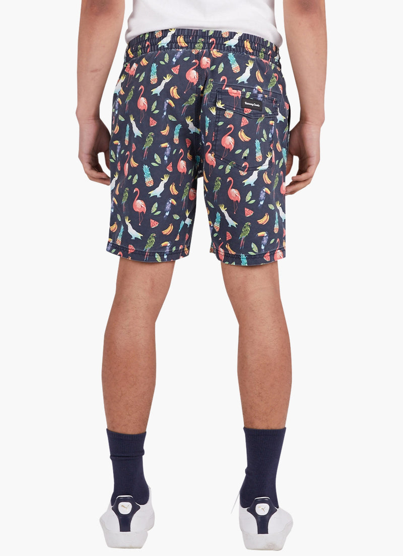 "Amphibious 17"" Swim Short Aussie Summer"