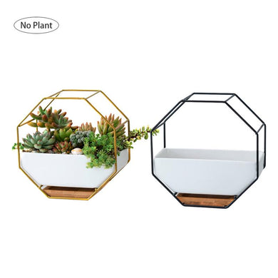 Octagon Iron Wall Hanging Rack with White Ceramic Planter Pot