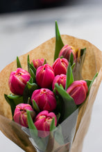 Load image into Gallery viewer, Double Tulips