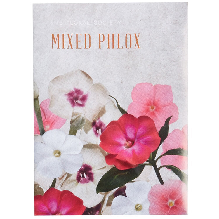 Seeds - Mixed Phlox