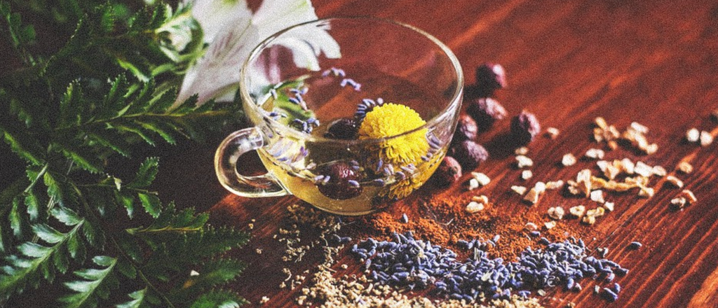 Plant Based winter herbs for a warming tea