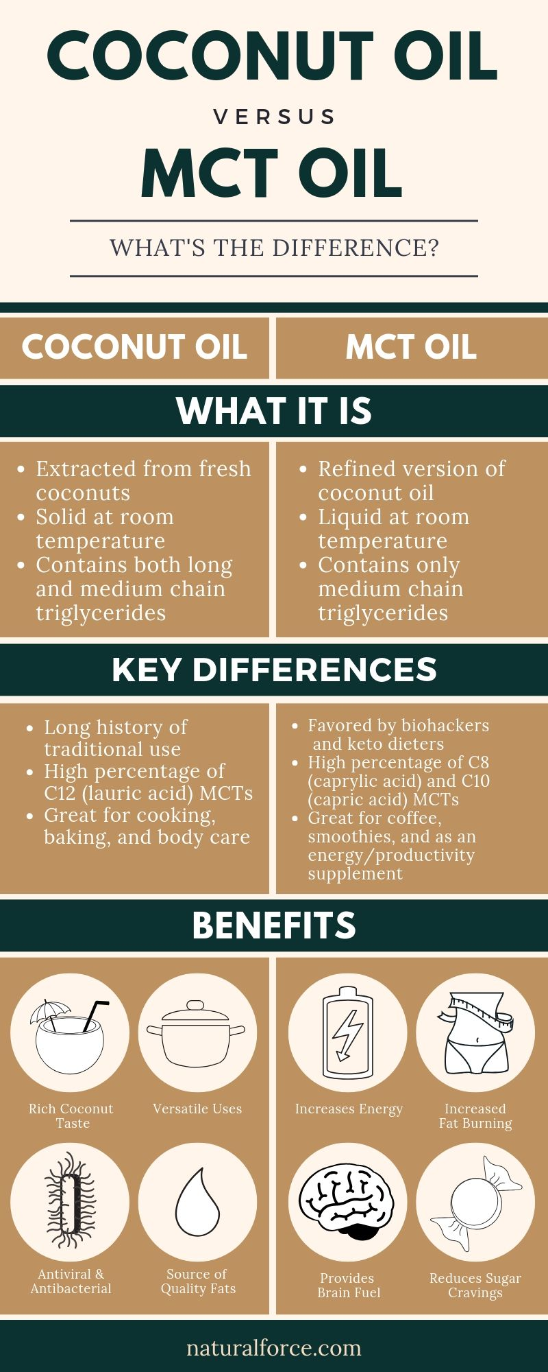 mct oil vs coconut oil infographic