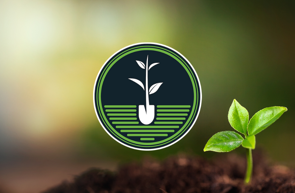 natural force is a one tree planted reforestation partner