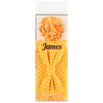 Gold/White - Polka Dot Bow Tie, Pocket Square and Flower Combo Set