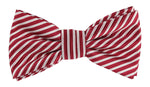 Burg/White - Diagonal Mini Stripe Microfiber Bow Tie