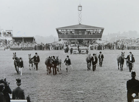 the great Yorkshire show - Harrogate in 1977 - old photo for Nordvek blog