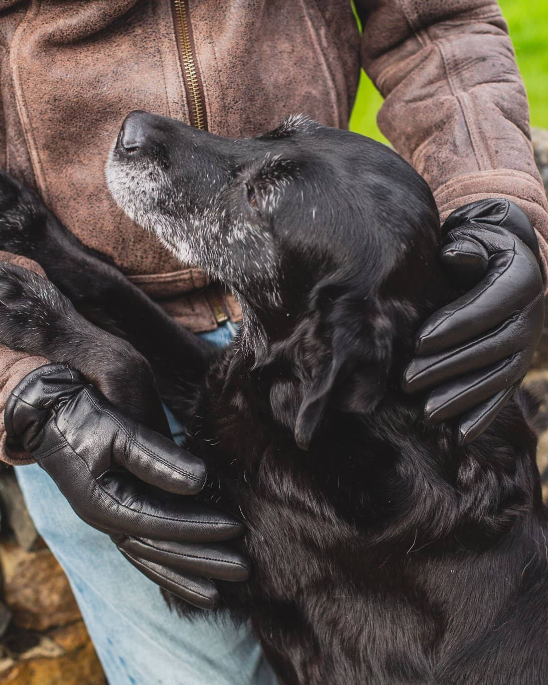 Nordvek Mens leather sheepskin black gloves petting dog 302-100