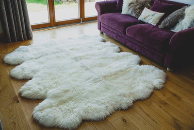 Nordvek sheepskin  natural rug 606-100 octo in front of sofa close up