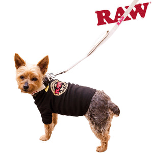 RAW Dog Leash