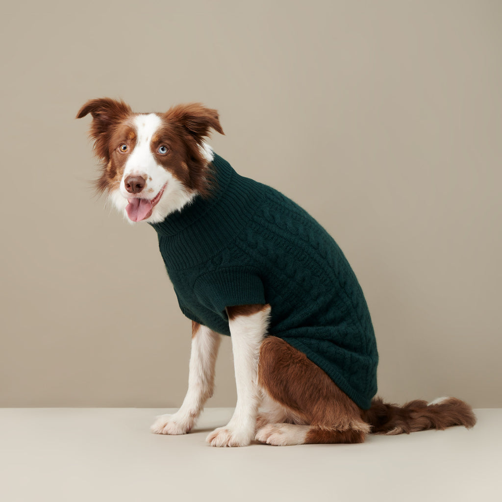 Green Fido Turtleneck