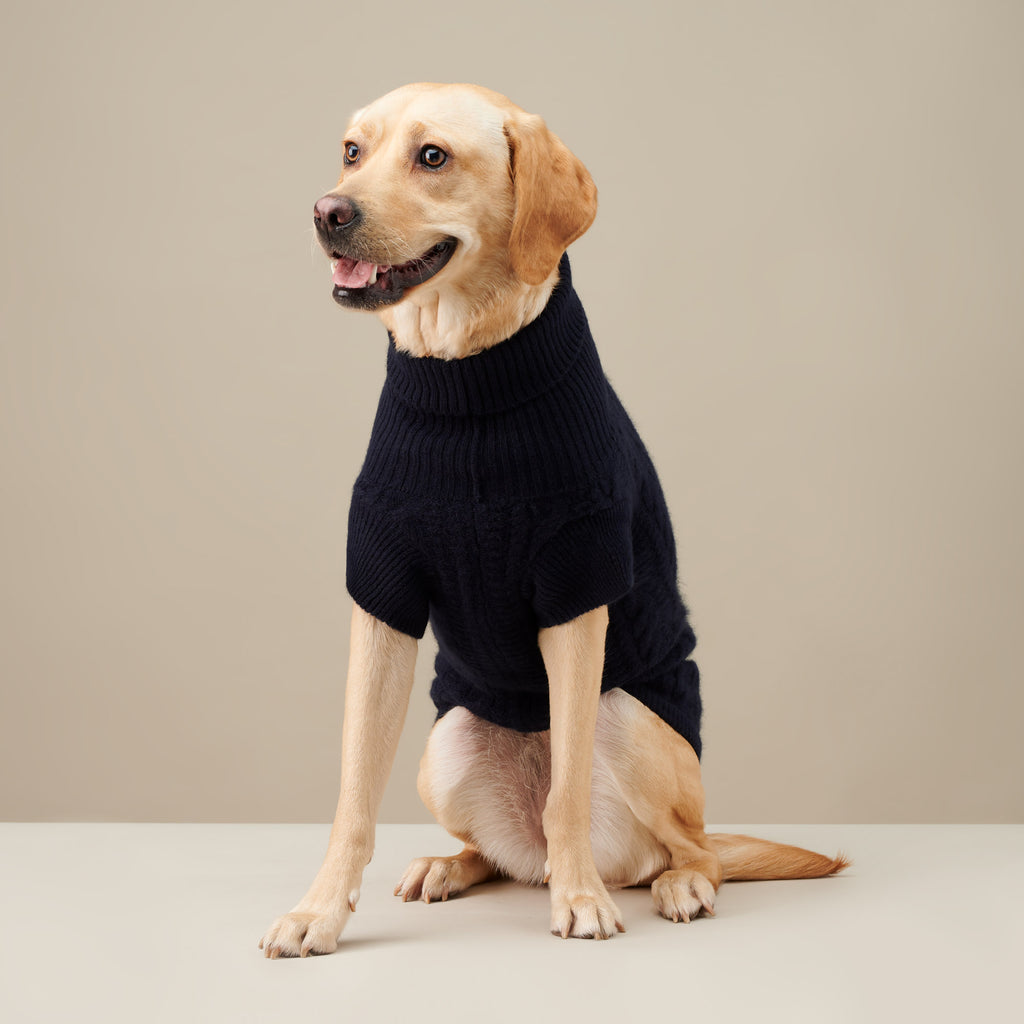 Navy Fido Turtleneck