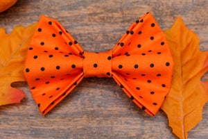 Orange Polka Dot Dog Bow Tie