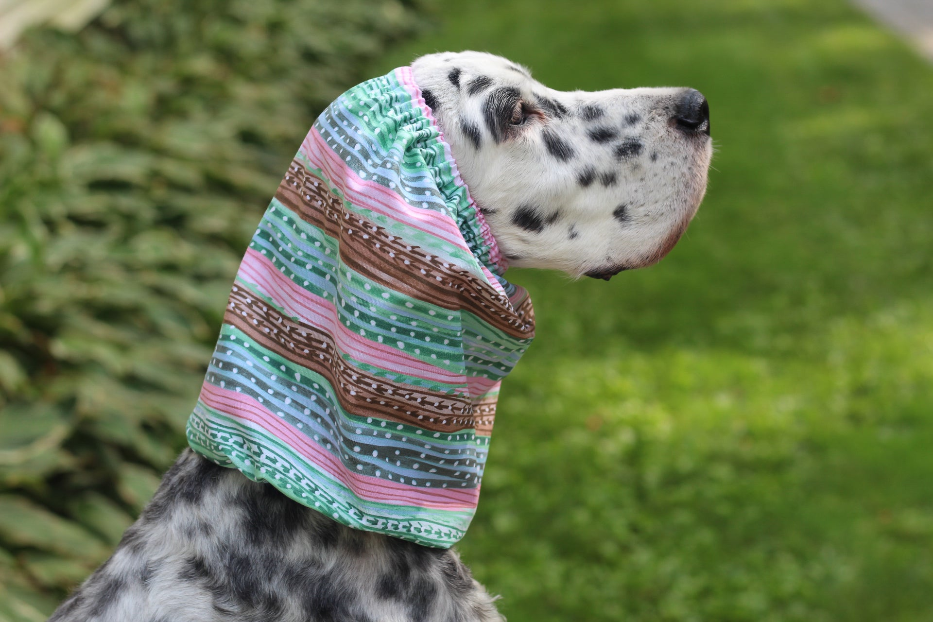 Pink, Green, and Blue Striped Polka Dot Snood