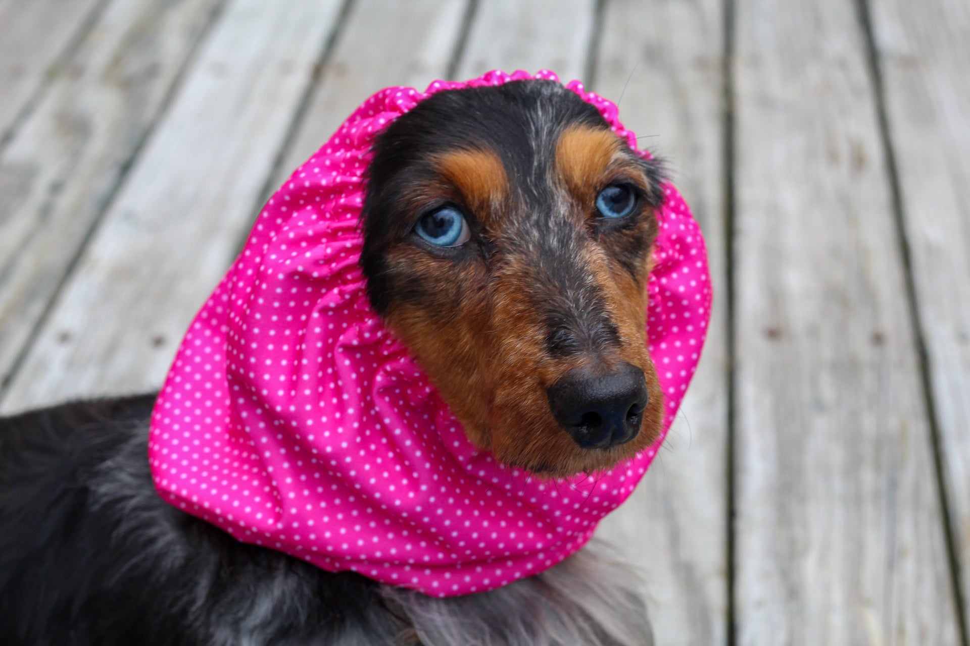 Pink Polka Dot Waterproof Snood