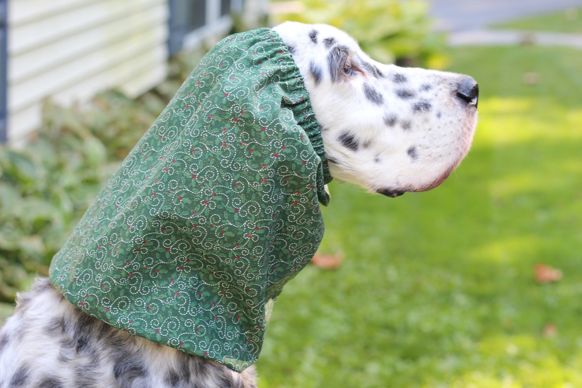 Sparkly Mistletoe Snood