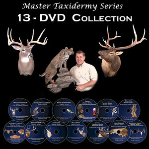 Taxidermy school video classes how to learn