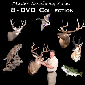 Taxidermy school classes how to taxidermy