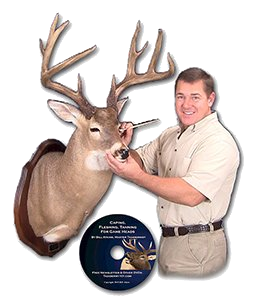 Caping and tanning taxidermy school video