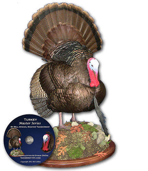 Turkey Taxidermy Classes