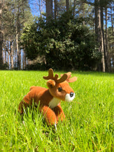 Load image into Gallery viewer, Adopt a Deer