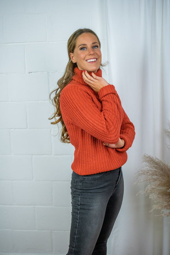 Tinelle Rollneck Knit - Rust