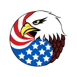 Eagle Head and USA Flag
