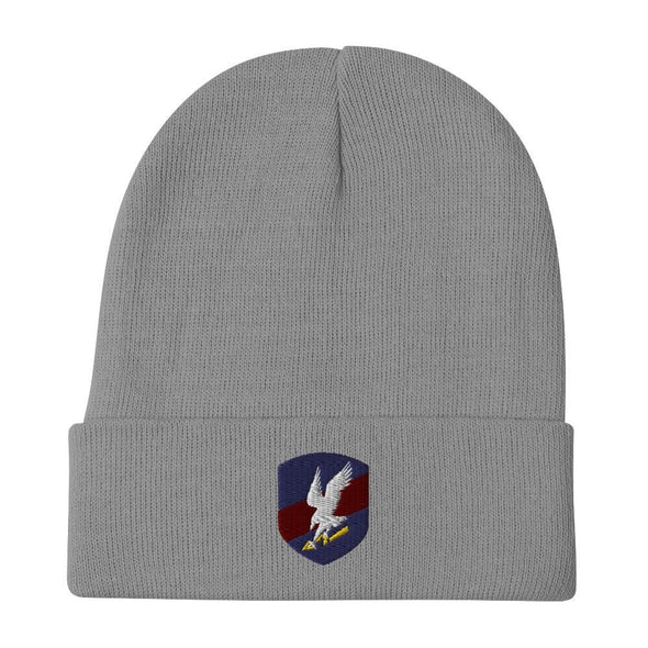 Polish JW GROM Embroidered Beanie - Gray