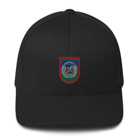 opszillastore,USAF Tactical Air Control Party (TACP) Flash Embroidered Structured Twill Cap,