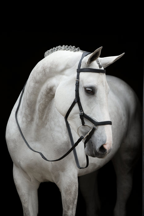 Rambo Micklem Competition Bridle