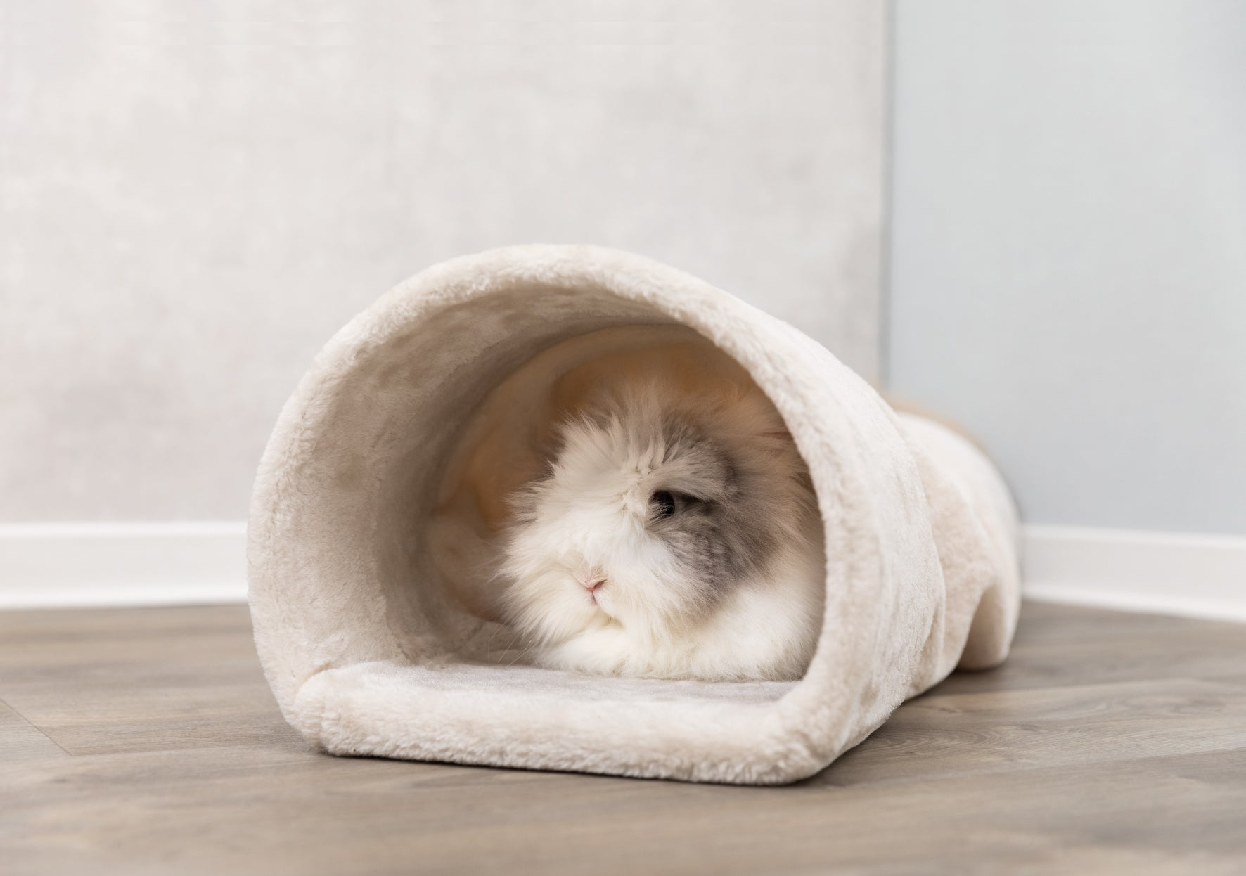 Cuddly Tunnel