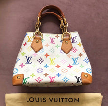 Load image into Gallery viewer, Louis Vuitton Audra Multicolore