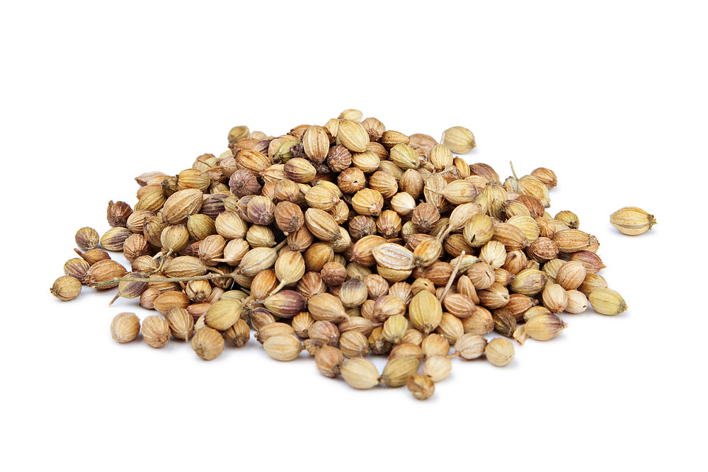 Coriander Seeds 5 oz