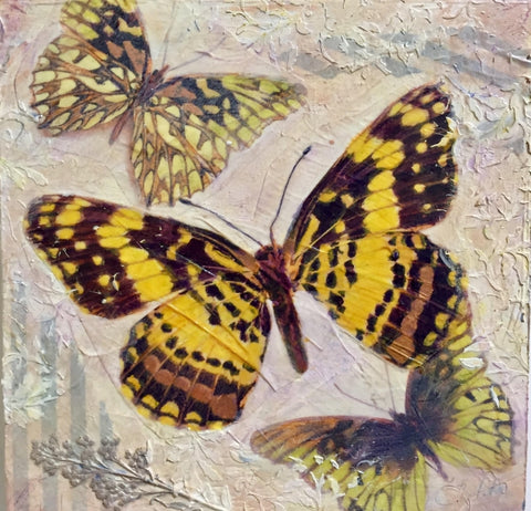 Tres Mariposas - Mixed Media on Panel Convergent Media by artist Judith Monroe
