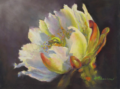 Nocturnal Cactus 2 - Soft Pastel Paintings by artist Donna Hahn Branson